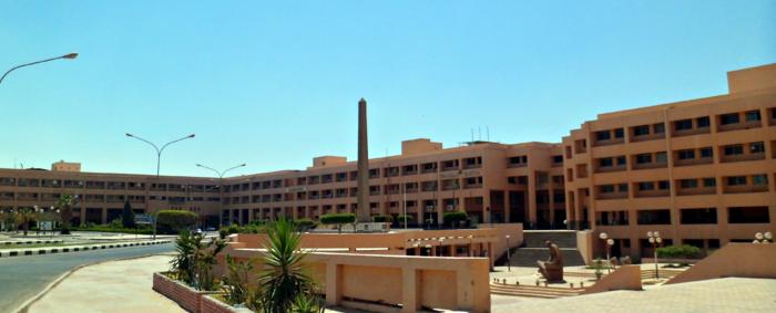 Sadat City University Microsystem hotspot
